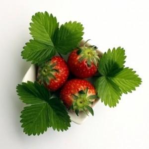 Erdbeeren-Arrangement